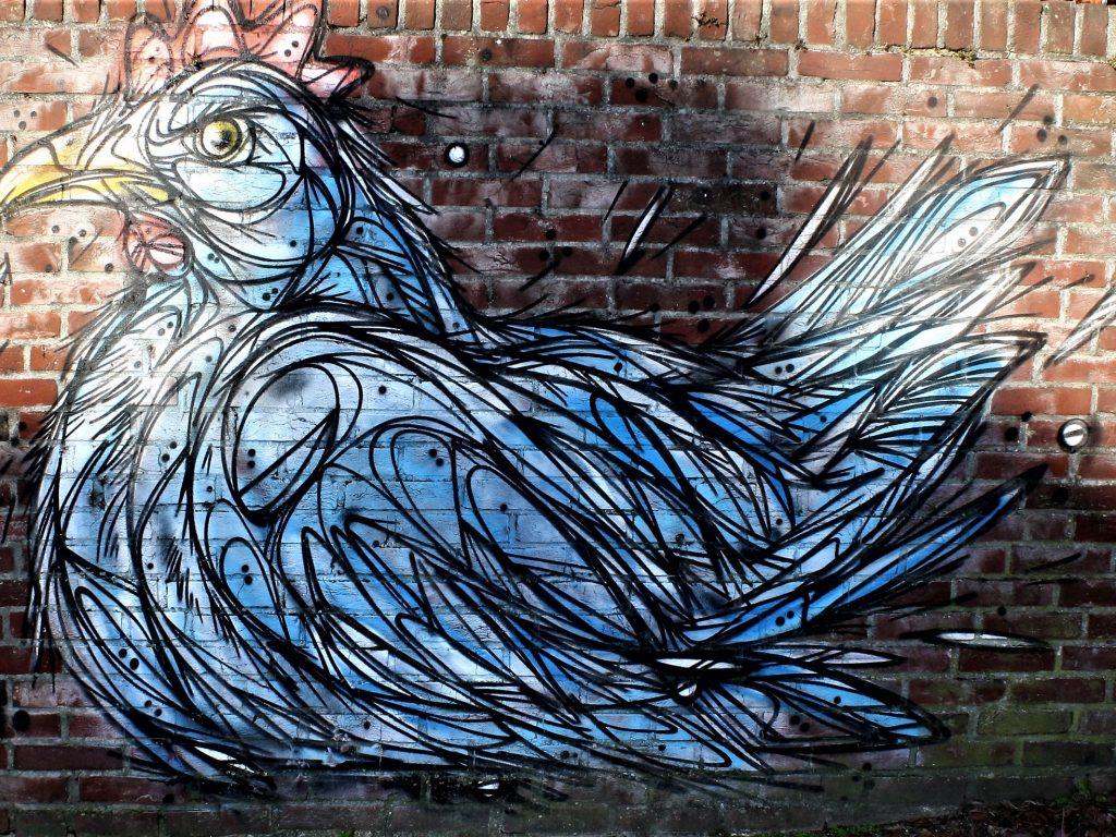 bkr2-g05 Willemstraat - Muurschildering-Kip- Dzia (BE)