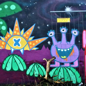 bkr5-a05 Sittarderweg-naamloos-Ox Alien (NL)