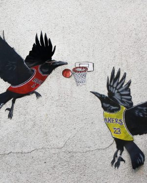 bkr1-m06a Plaarstraat - korfbalvogels (weg)
